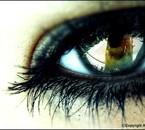 Gardez bien les yeux ouvert sur le monde...