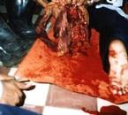 2006 Victime de mine la realité que persone doit ignoré
