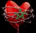 marok arriva viva ma3reb!!!