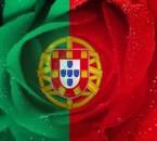 Amo-te PORTUGAL  !!!