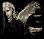 like angel
