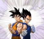 Végéta et Goku