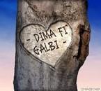 """""""DiMa Fi GaLbi"""", Ca ResTeRa TjS VrAi..."""