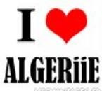 tkt algerie represente