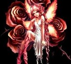 Fée des roses