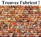 Trouvez l'abricot