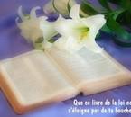 lis ta Bible et prie chaque jours.....