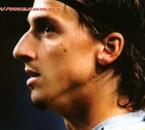 vive Ibrahimovic