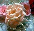 romance de roses