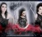 amylee for ever