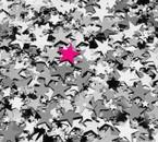 étoile rozz'