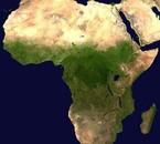 Free Africa