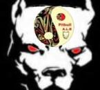 69 PITBULL A.L.B. Logo