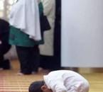 * * * Allah i kbel * * *