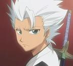 Hitsugaya le ptit bo gosse du Gotei 13