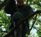 Moi dans un arbre