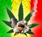 jamaique scrat don't worry be happy ^^