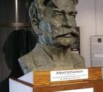 Notre Albert