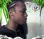 profil reptil 976