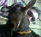 J'aime les animaux ! Me voici avc une 'tite Biquette ^^