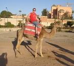 Marrakech (décembre 2006)