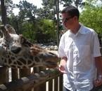 Zoo de la Palmyre, Royan (avril 2007)