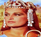 LES PYRAMIDES L'EGYPTE