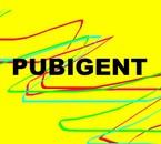 PUBIGENT01