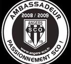 Ambassadeur 2008 / 2009