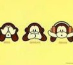 Bape !!!!