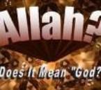 en dit que les amazighs sont contre l'islam mais c po vrai