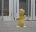 Winnie the big boss !