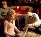 harry hermione et ron