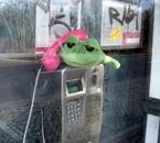 Rabachole au téléphone