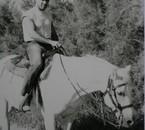 à cheval en Camargue