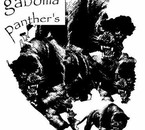 Gaboma panthers