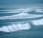je suis né avec ses vagues