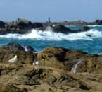 Mes vacances dans le Finistère