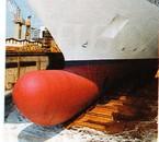 coque de bateau male a la période de la reproduction