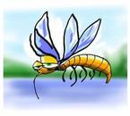 tu conais les moustique, tu m'connais !!