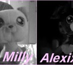 Meilleuree Amie & Moi On Va Reproduire Milly & Alexix.