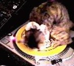 Pleaze Don't stOp the Music !!