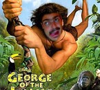 mois en george de la jungle