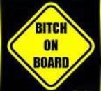 bitch on board