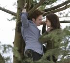 - Je les préfère à Tarzan et Jane U_U -