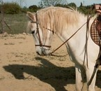 Gabian <3 Le cheval de mon grand père