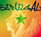 Siisii le Senegal xp