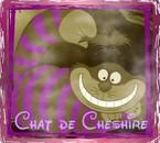 Mon idole : le chat de Cheshire !