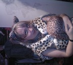 mini léopard