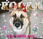 Mon Rocky